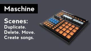 Native Instruments Maschine: How to use Scenes