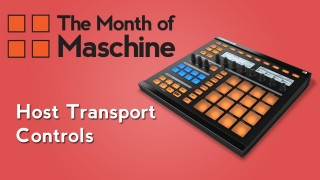 Maschine Tutorial: How to Enable Host Transport Controls